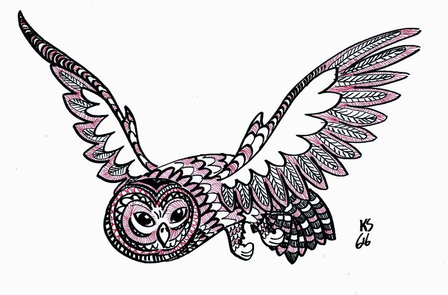 Pöllö_n